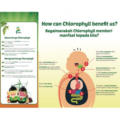 2 x Surya Lychee with Chlorophyll 500ml (Exp: Oct'20)